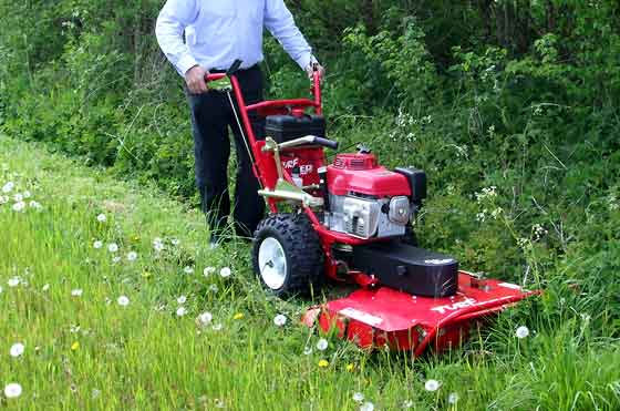 brush cutter for mowing long grass (large pic)
